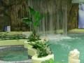 银海温泉,银海温泉旅游攻略,银海温泉旅游景点