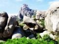 珠山国家森林公园,珠山国家森林公园旅游攻略,珠山国家森林公园旅游景点